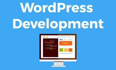 Top Reasons to opt for WordPress Development